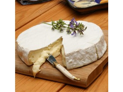 CHEESE PHOTO-2