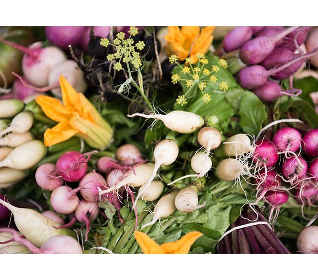 chefs garden image 1-2