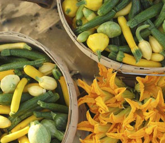 chefs garden image 2-2