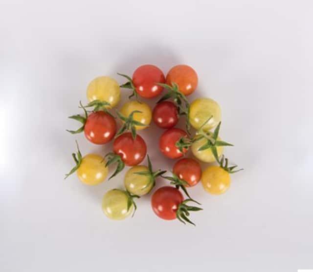 chefs garden tomato-2