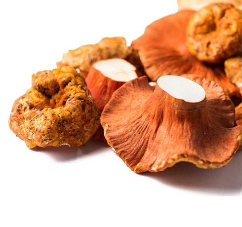 lobster mushroom-2