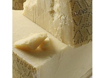 parmesan image-2
